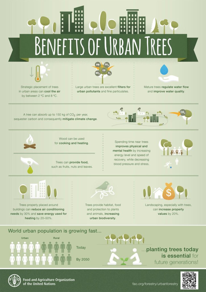 The benefits of urban trees infographic