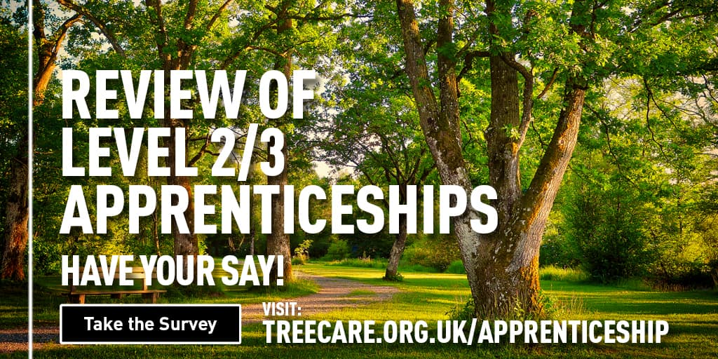 Review of Level 2/3 Apprenticeships